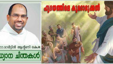 Photo of Ascension Sunday_Year A_ഹൃദയത്തിലെ കൂടൊരുക്കൽ (മത്താ 28:16-20)