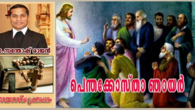 Photo of Pentecost sunday_Year A_പരിശുദ്ധാത്മാവ്: മന്ദമാരുതൻ കൊടുങ്കാറ്റ്