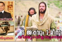 Photo of 18th Sunday_Ordinary time_Year A_അഞ്ചപ്പവും രണ്ടു മീനും വീണ്ടും വിളമ്പുമ്പോൾ