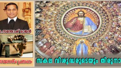 Photo of All Saints Day_Year A_സകല വിശുദ്ധരുടെയും തിരുനാൾ