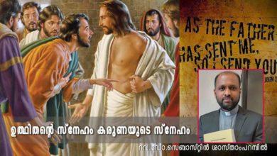 Photo of 2nd Sunday of Easter_Year B_ഉത്ഥിതന്റെ സ്നേഹം കരുണയുടെ സ്നേഹം