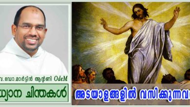 Photo of Ascension of the LORD_Year B_അടയാളങ്ങളിൽ വസിക്കുന്നവൻ (മർക്കോ 16:15-20)